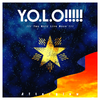 Y.O.L.O!!!!! Original In-Game Cover
