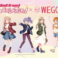 THE PASSION FES Wego Collaboration